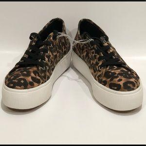STEVE MADDEN Leopard Sneakers